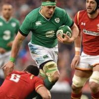 Stander Steals The Show as Ireland and Wales Battle For Draw