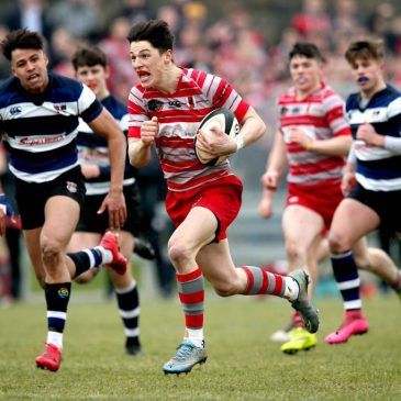 Munster schools senior cup betting tips most predicitive sports betting models